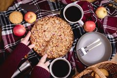 Tasty homemade apple pie Apple pie Apples Cinnamon Plate Woolen blanket Wooden background Top view Picnic Thermos Picnic basket Royalty Free Stock Photos