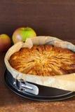 Tasty homemade apple pie Stock Images