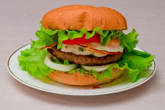 Tasty homemade burger on a plate Royalty Free Stock Photo