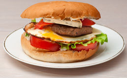 Tasty homemade burger on a plate Royalty Free Stock Images