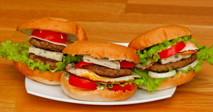 Tasty homemade burger on a plate Royalty Free Stock Image