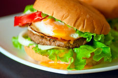 Tasty homemade burger on a plate Royalty Free Stock Photos