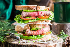 Tasty homemade sandwich with beef Stock Photos
