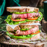 Tasty homemade sandwich with ham and vegetables Royalty Free Stock Photography