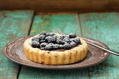 Tasty homemade vegan cake with fresh juicy blackberries and icin Stock Images