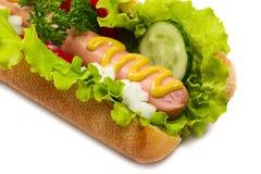 Tasty hot dog, food Stock Image