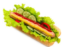 Tasty hot dog, food Stock Images