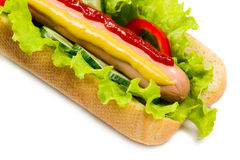 Tasty hot dog, food Stock Image