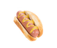 Tasty hot dog with mustard. Royalty Free Stock Photo