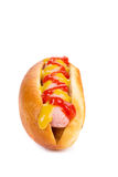 Tasty hot dog with mustard. Royalty Free Stock Images