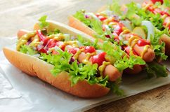 Tasty hot dogs Royalty Free Stock Images