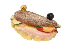 Tasty Hot Sandwich Royalty Free Stock Images