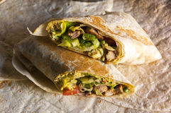 Tasty indian wrap with chicken meat and garam masala Stock Image
