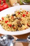 Tasty italian mushroom risotto Royalty Free Stock Image