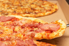 Tasty italian pizza with bacon and cheese Stock Photography