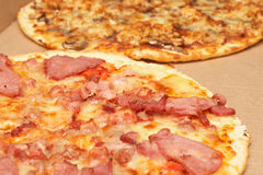 Tasty italian pizza with bacon and cheese. Tasty italian thin crust pizzas with bacon and mozzarella cheese, and mushroom and chicken Stock Photos