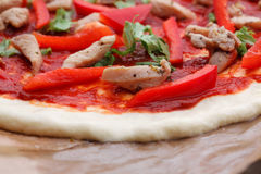 Tasty Italian pizza with cheese and chiken Stock Photos