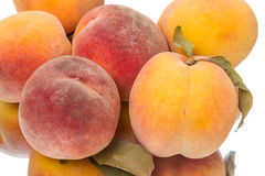 Tasty juicy peaches Stock Photos