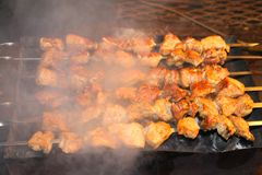 Tasty juicy pieces of meat fried on coals. barbecue on the grill stock image