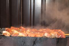 Tasty juicy pieces of meat fried on coals. barbecue on the grill royalty free stock photo