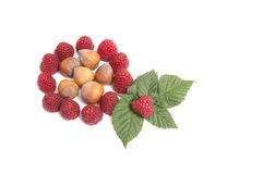 Tasty,juicy  raspberries and nuts on a white. Stock Photo