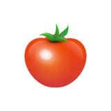 Tasty Juicy Tomato Stock Images