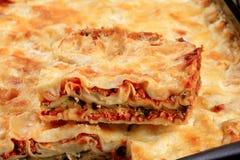 Tasty lasagna Royalty Free Stock Photo