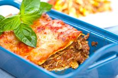 Tasty lasagne with meat covered with cheese served on white plate royalty free stock photos