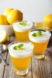 Tasty lemon jelly Royalty Free Stock Photo