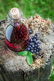 Tasty liqueur in a bottle with alcohol and blueberries Stock Photography