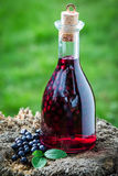 Tasty liqueur in a bottle made of alcohol and blueberries Stock Photo