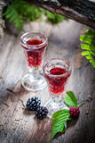 Tasty liqueur made of blackberries and alcohol Stock Image