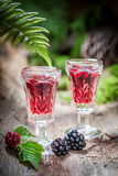 Tasty liqueur made of blackberries and alcohol in summer Stock Image