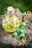 Tasty liqueur made of gooseberries and alcohol Royalty Free Stock Photo