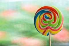 Tasty looking lollypop one a stick and multi coloured Stock Image