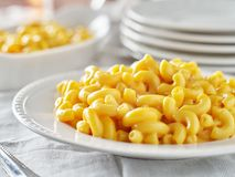 Tasty mac and cheese on plate close up. Tasty mac and cheese on plate shot close up with selective focus on the noodles royalty free stock photos