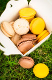 Tasty macaroons in the box Royalty Free Stock Image