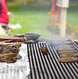 Tasty meat on the grill Stock Images