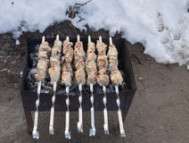 Tasty meat roasted on coals. Caucasian delicacy royalty free stock photography