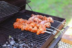 Tasty meat steaks on the grill with coals. Delicious grill at picnic. stock images