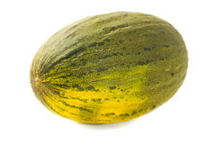 Tasty melon Royalty Free Stock Photography