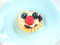 Tasty mini cake with fresh raspberries and blueberries Royalty Free Stock Photos