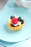 Tasty mini cake with fresh raspberries and blueberries Stock Photography