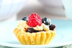 Tasty mini cake with fresh raspberries and blueberries Royalty Free Stock Photography