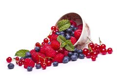 Tasty mix of berries Stock Image