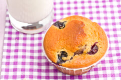 Tasty muffin Royalty Free Stock Photos