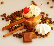 Tasty muffin cakes Stock Photography