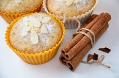 Tasty muffin cakes with cinnamon sticks. Tasty homemade muffin cakes with cinnamon sticks on white Stock Photography