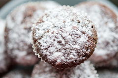 Tasty muffin cakes sprinkled with powdered sugar homemade Royalty Free Stock Images