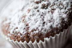 Tasty muffin cakes sprinkled with powdered sugar homemade Royalty Free Stock Photos